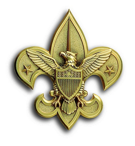 scout fleur de lis google search eagle scout pinterest. Black Bedroom Furniture Sets. Home Design Ideas