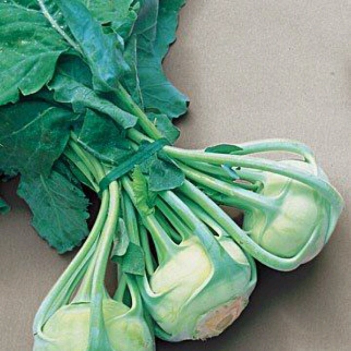 "Kohlrabi- bought some today at the Independence market. Made ""chips ..."