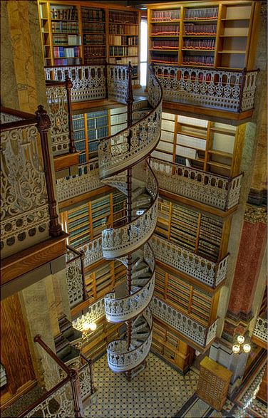 Fantastic library with a spiral staircase.