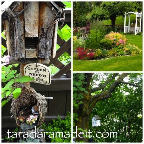 Pinterest Discover And Save Creative Ideas: Easy Gardening Ideas Pinterest Photograph