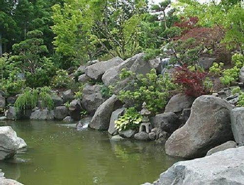 Large Garden Pond Garden Pinterest