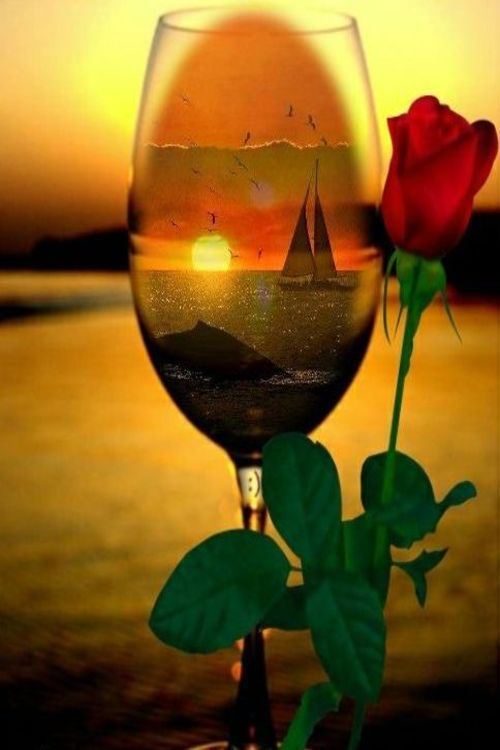 1000 images about romantic summer night on pinterest