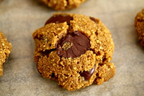 Coconut Flour Chocolate Chip Pumpkin Cookies Revisited | Frisky Lemon