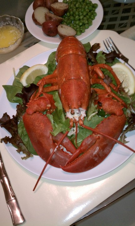 Lobster! Boiled | ~ Resourceful Recipes ~ | Pinterest