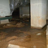A Wet Crawl Space Is Not Only Ugly But It Can Affect Your