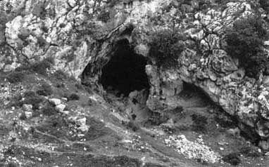 qafzeh cave dating websites The excavation of the qafzeh cave by rené neuville, while he was serving as the french consul general in jerusalem, began in earnest in 1934, after a test excavation conducted the year.