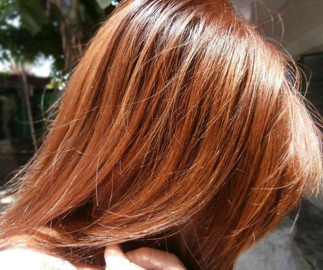 Honey Chestnut Brown Hair Colors | Hair | Pinterest