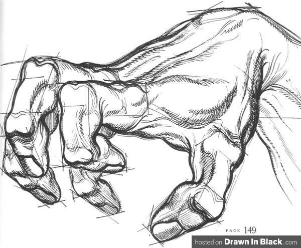 dibujo de los detalles de las manos