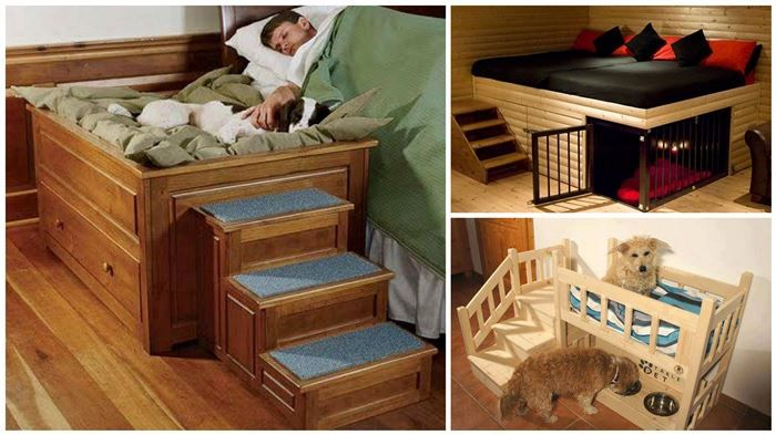 7 Amazing Dog Beds With Stairs Cool Stuff Pinterest