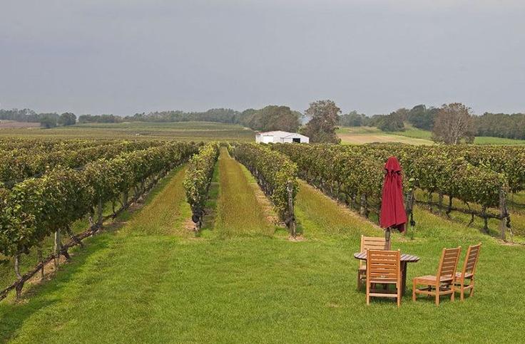 long island wineries memorial day weekend
