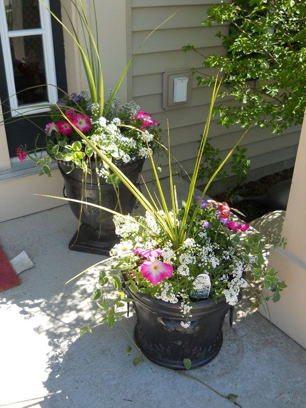 Outdoor flower pot arrangement lawn garden pinterest for Garden arrangement