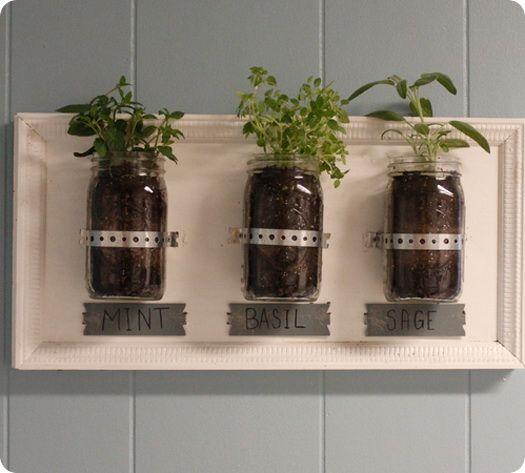 Kitchen Herb Garden Diy Stuff Gardening Pinterest