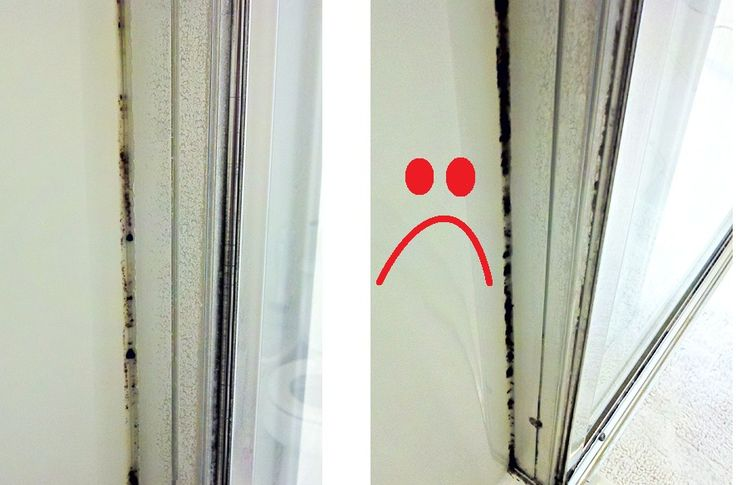 how to get rid of black mold in shower pictures apps