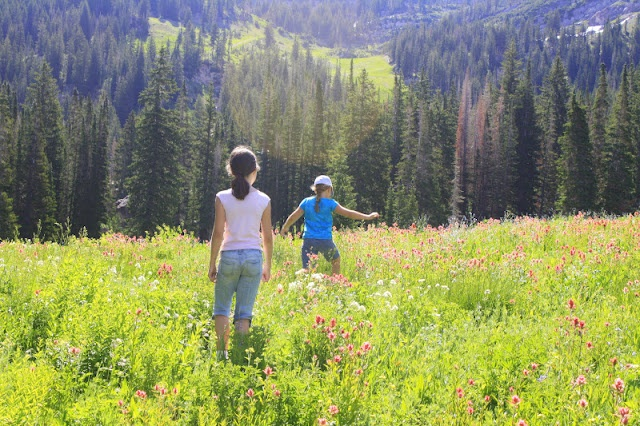 Secret Lake Hike:  This is such a gorgeous, easy hike - beautiful wildflowers.  In the Albion Basin in Little Cottonwood Canyon.