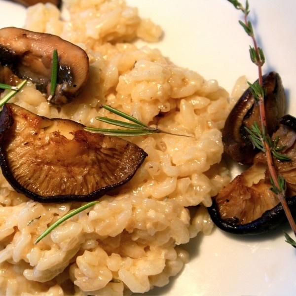 Risotto With Wild Mushroom By Debbie Gore