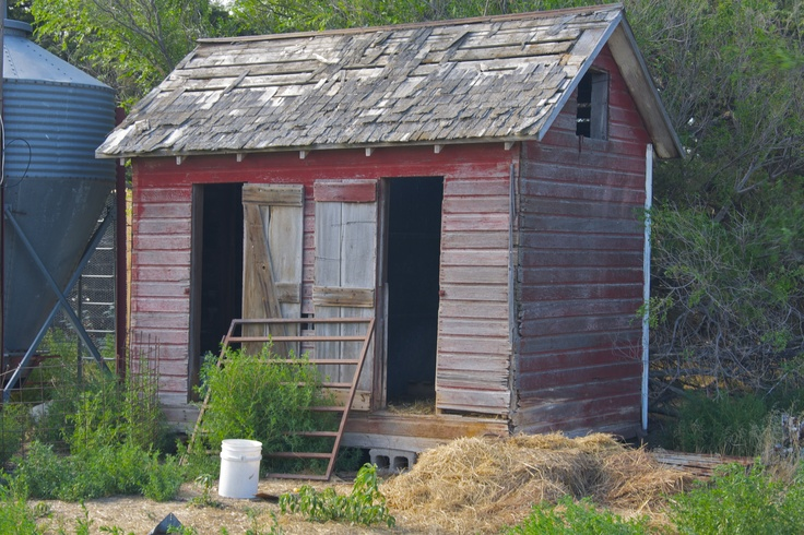 Old chicken coop barns pinterest for Old farm chicken coops