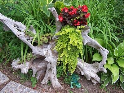 Поделки садовые из пней фото
