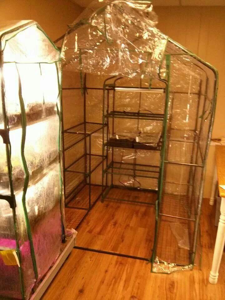 indoor greenhouse gardening pinterest