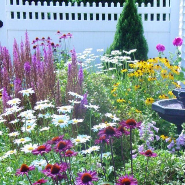 Butterfly Garden Gardening ideas Pinterest