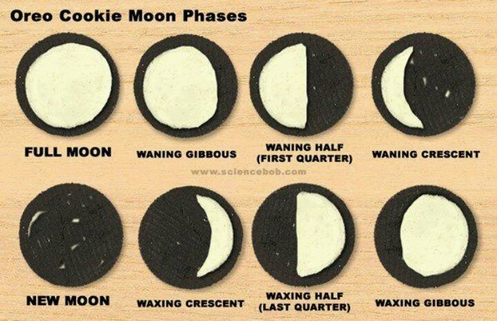 Oreo cookie phases of the moon | Science / Teacher things | Pinterest