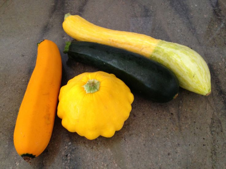 Creamy Summer Squash Soup - squash used | Things for dinner | Pintere ...