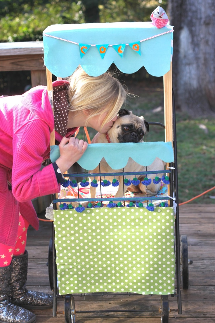 The World According To Ruby...: Crafting with Coco...pug dog stroller
