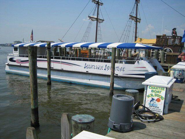 Assateague adventure talbot st pier ocean city md for Ocean city md fishing pier
