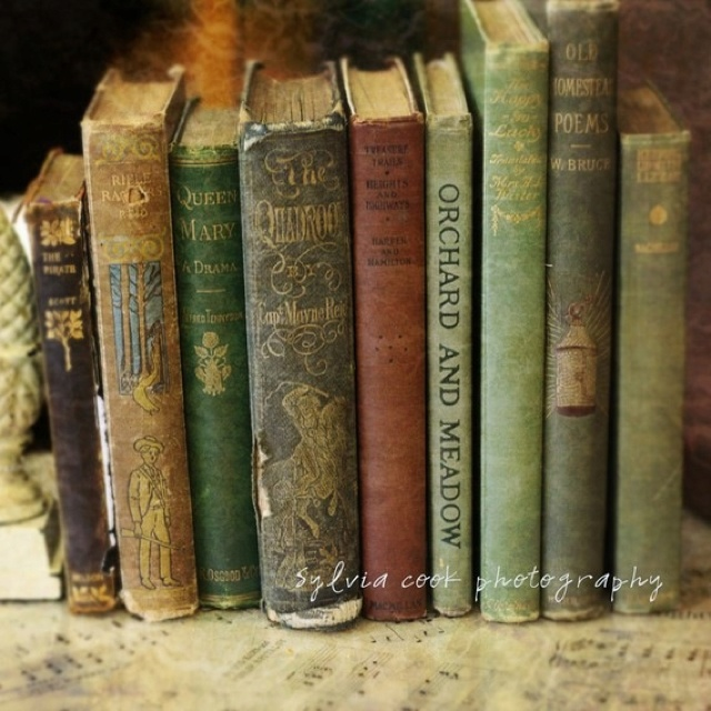 Old books display home decorating ideas pinterest - Decorative books for display ...
