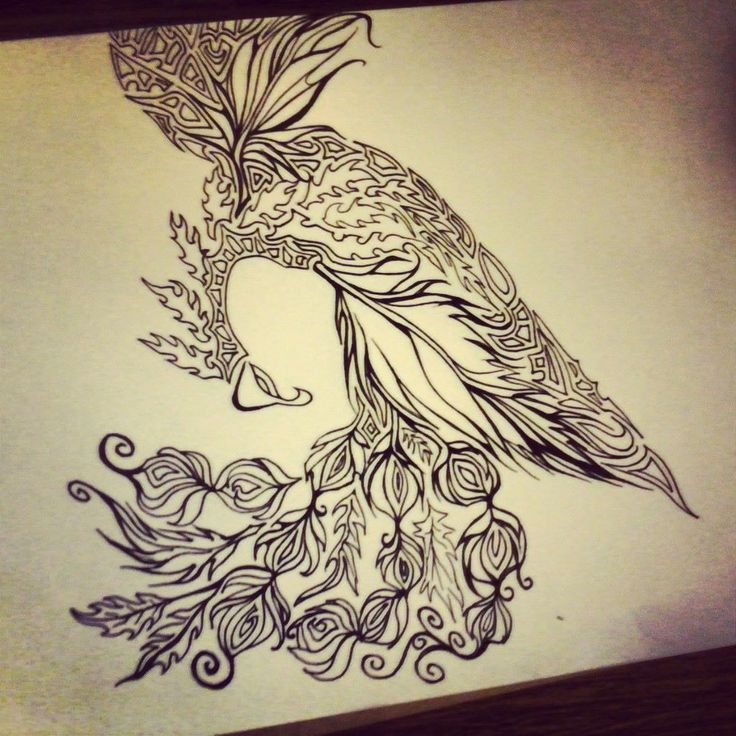 Phoenix Drawing. #tattoo Ideas