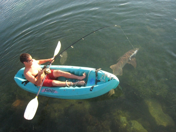 Kayak shark fishing at sue 39 s promise cayo costa 2013 for Fishing spots near me no boat