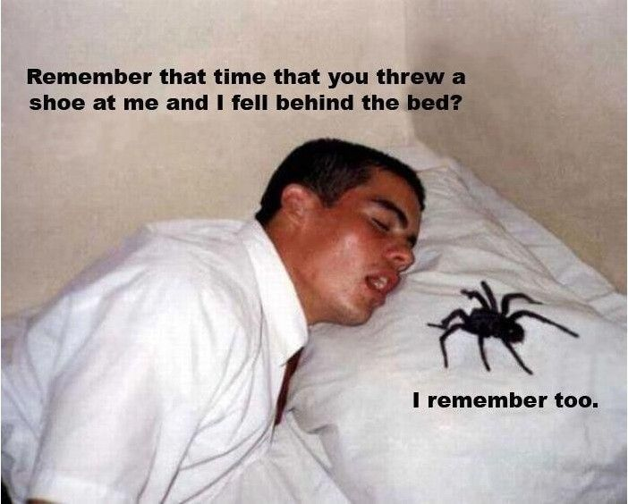 I would have a heart attack!