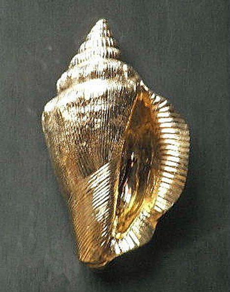Brass conch shell nautical door knocker boca grande rehab pintere - Nautical door knockers ...