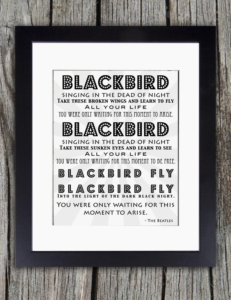 The Beatles  Blackbird Lyrics  Genius Lyrics