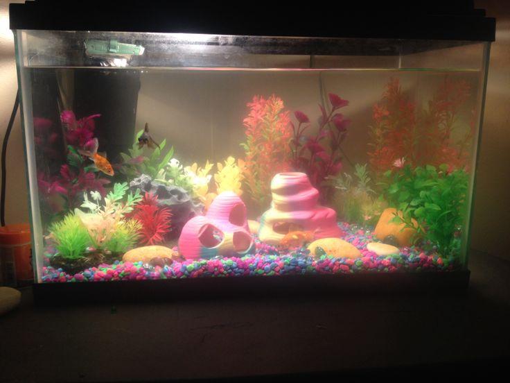 My fish tank outdoor pinterest for My fish tank