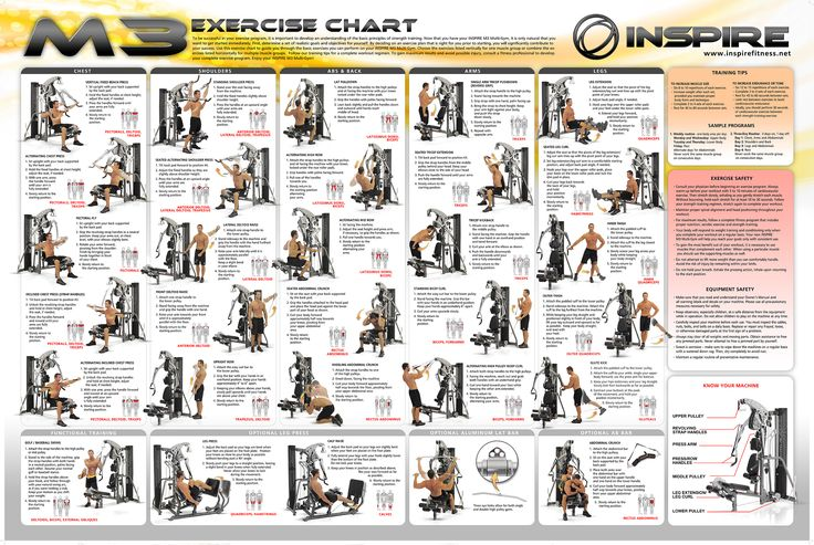 inspire M3 chart exercise | Ejercicio|Fitness | Pinterest