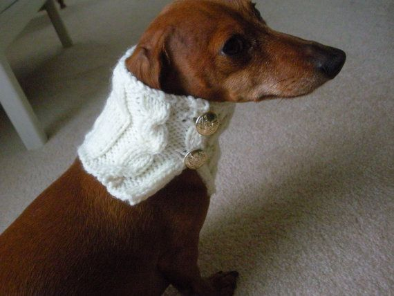 Knitting Patterns For Extra Small Dogs : Extra Small Dog Sweater Pattern Dog Breeds Picture