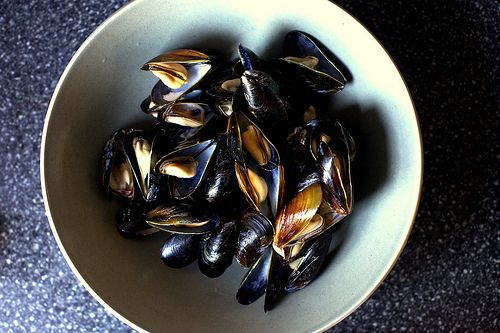 broiled mussels | smitten kitchen