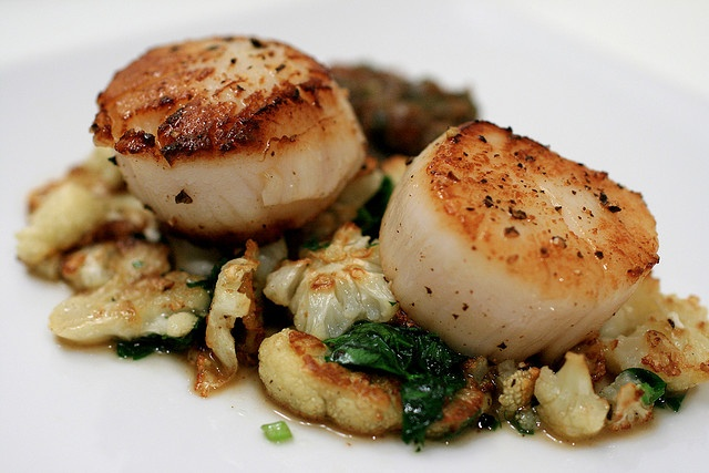 Seared Scallops With Lemon And Vodka Recipes — Dishmaps