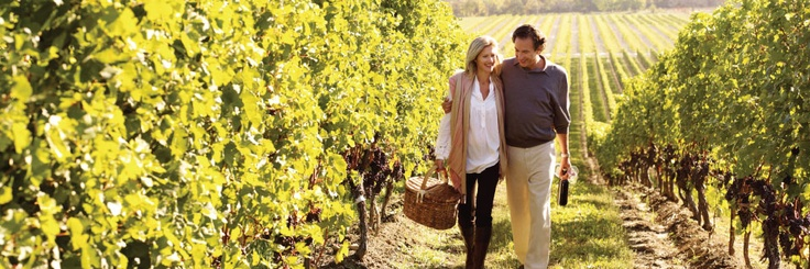 Click through for the Wine Route Planner available at Wine Country Ontario website.