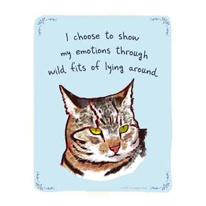 emotional striped cat ; christopher rozzi