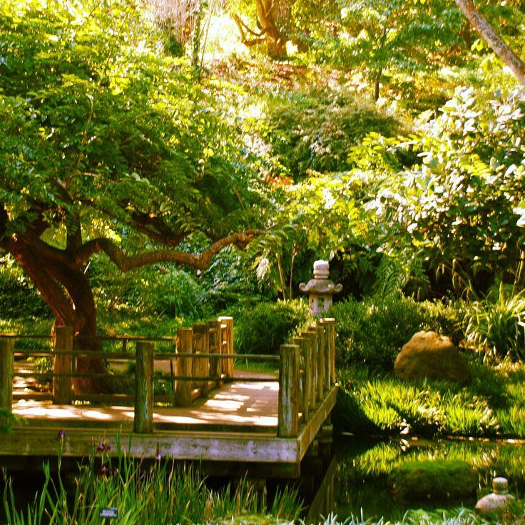 San Francisco Botanical Garden San Francisco Pinterest