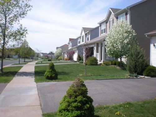 Street in The Grove Neighborhood
