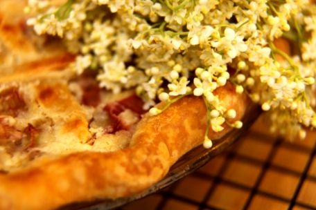 Rhubarb Sour Cream Pie Recipe — Dishmaps