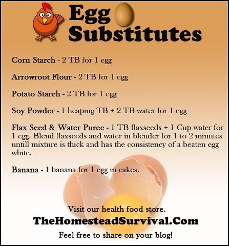 Egg substitutes recipes to try pinterest - Alternative uses for eggs ...