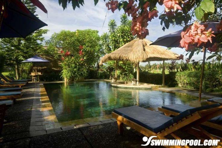 Tropical Backyard Oasis Pool For The Home Pinterest