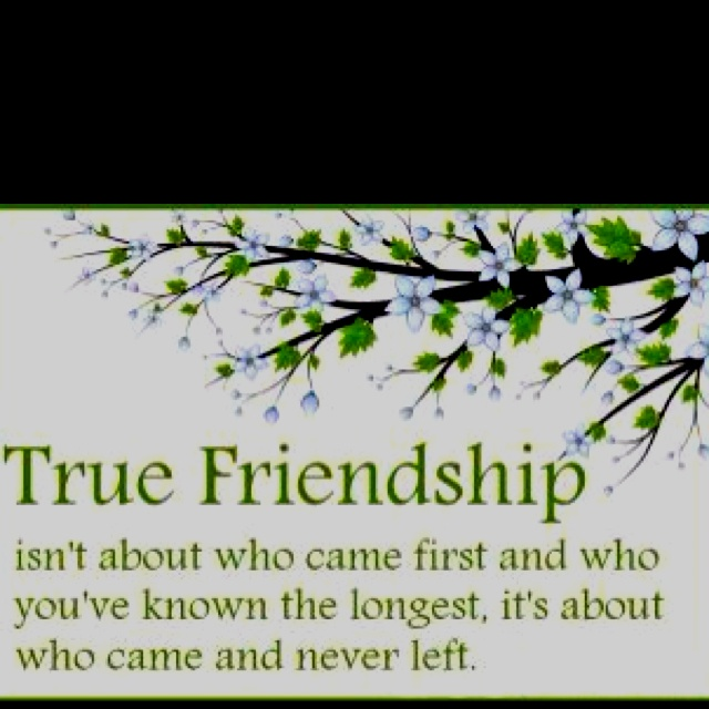 """the true meaning of friendship David whyte on the true meaning of friendship, love, and heartbreak """"all friendships of any length are based on a continued, mutual forgiveness without tolerance ."""