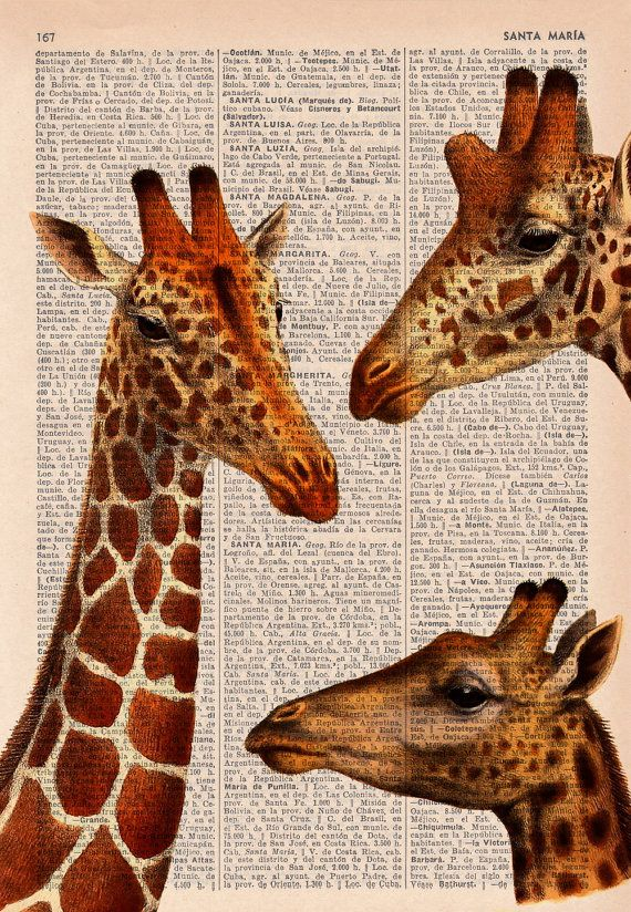 Giraffes meeting - Dictionary Book Print