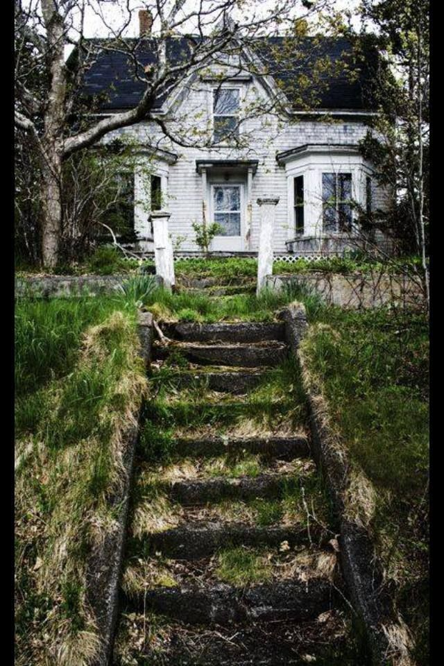 Abandoned In Nova Scotia Castles Cabins Woodsy Shit