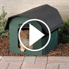 Watch The Only Outdoor Heated Cat Shelter in action. $129.95. m ...
