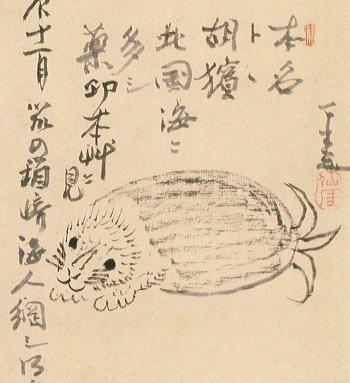 仙がい義梵の画像 p1_22
